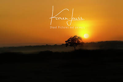 Art Print featuring the photograph Acacia Tree Sunrise by Karen Lewis