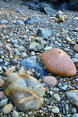 Photograph - Acadia Beach by Ray Mathis
