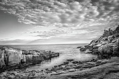 Photograph - Acadia Coast by Brian Caldwell