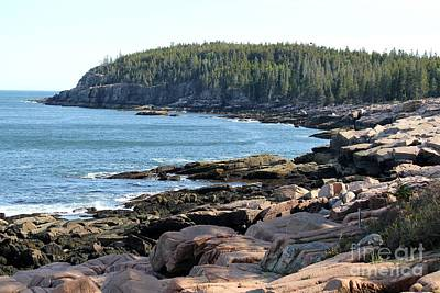 Photograph - Acadia Cove by Theresa Willingham