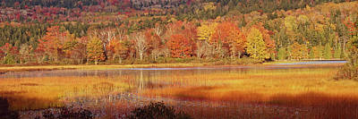 Photograph - Acadia Fall Panorama by Tom Daniel