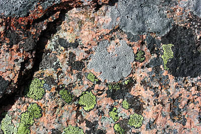 Photograph - Acadia Granite 51 by Mary Bedy