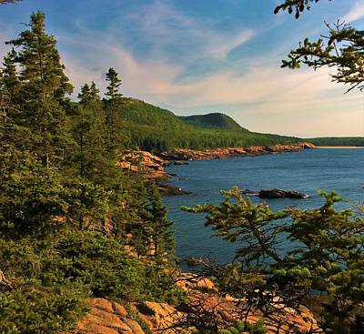 Photograph - Acadia by Lisa Dunn