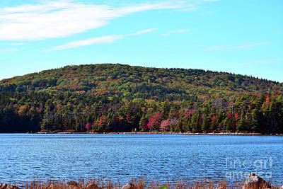 Photograph - Acadia Maine by Patti Whitten
