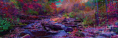 Photograph - Acadia Maine Sunrise Stream Fall by Tom Jelen