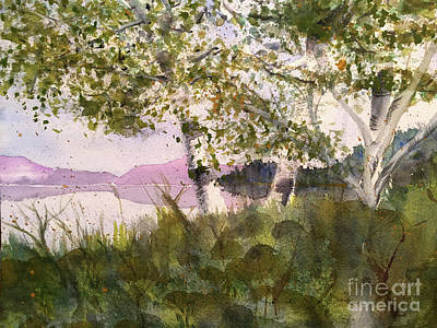 Acadia Morning Art Print by Maura Satchell