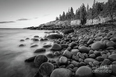 Photograph - Acadia National Park Boulder Beach Bw by Michael Ver Sprill