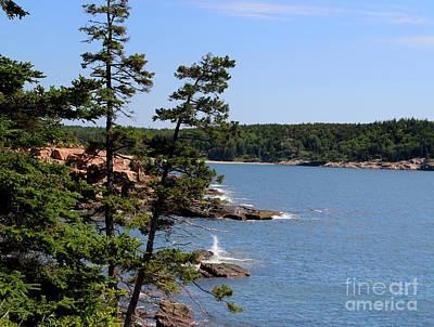 Photograph - Acadia National Park Coast by Lennie Malvone