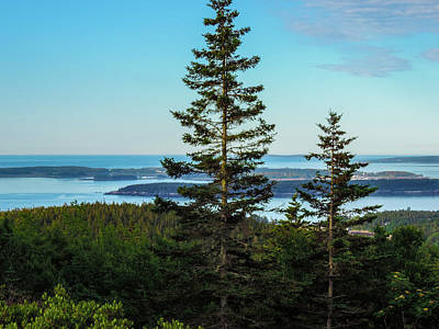 Photograph - Acadia National Park by Mim White