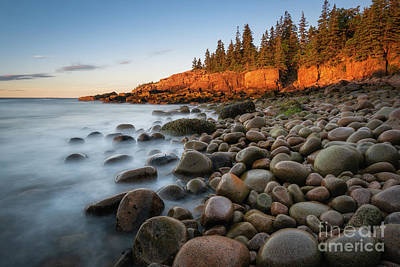 Photograph - Acadia National Park Morning Light by Michael Ver Sprill