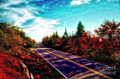 Photograph - Acadia Natl Park Cadillac Mountian Road Fall Maine  by Tom Jelen