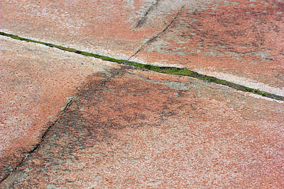 Photograph - Acadia Red Granite by Mary Bedy