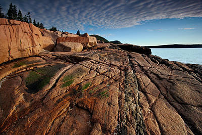 Photograph - Acadia Rocks by Neil Shapiro
