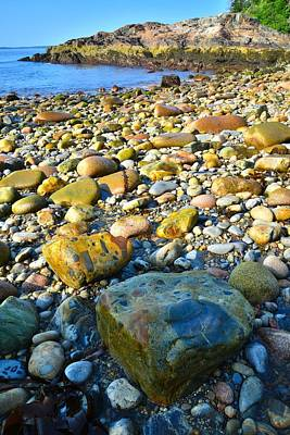Photograph - Acadia Shoreline by Ray Mathis