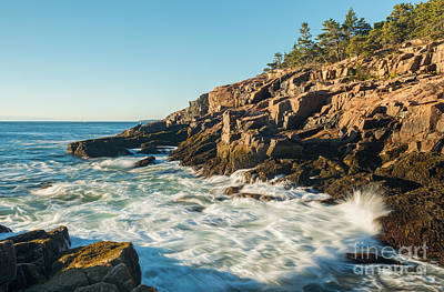 Photograph - Acadia Surf by Sharon Seaward