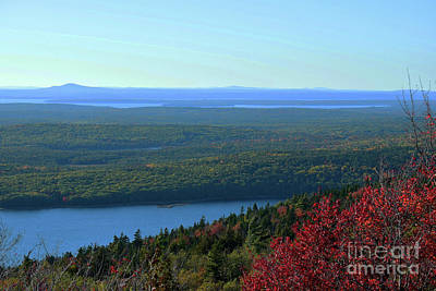 Photograph - Acadia Waterways by Patti Whitten
