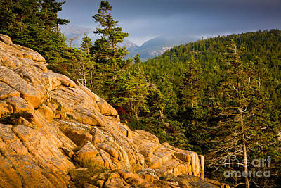 Acadian Mountains Art Print by Susan Cole Kelly