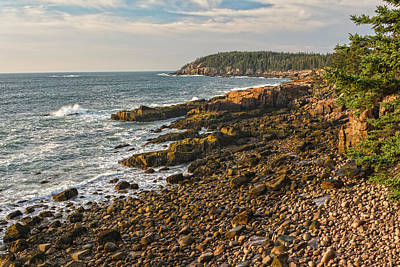 Photograph - Acadia's Boulder Beach Perspective by Angelo Marcialis