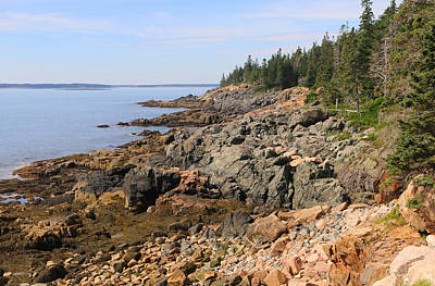 Photograph - Acadia's Coastline by Living Color Photography Lorraine Lynch