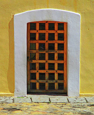 Photograph - Acapulco Door 6 by Randall Weidner