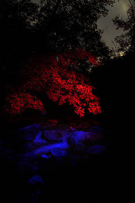 Light Paint Photograph - Accentuated by David Andersen