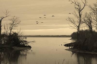 Photograph - Accokeek Creek by Buddy Scott