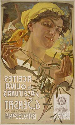 Aceites De Oliva Y Aceitunas Art Print