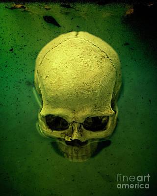 Bog Wall Art - Photograph - Acid Pool Skull by Edward Fielding