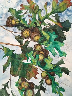 Acorns On An Oak  Art Print