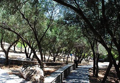 Photograph - Acropolis Trail by Robert Moss