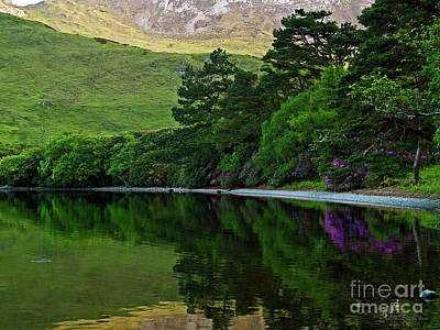 Photograph - Across From Kylemore Abbey by Patricia Griffin Brett