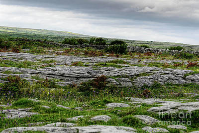 Photograph - Across The Burren by Elvis Vaughn