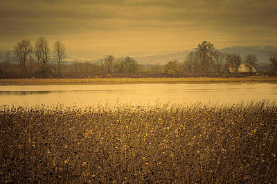 Photograph - Across The Field And Pond by Don Schwartz