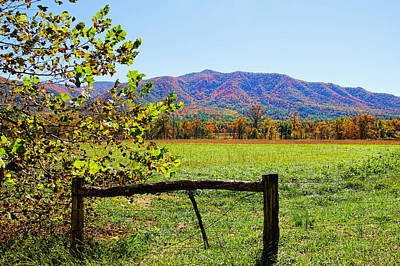 Photograph - Across The Meadow - Cades Cove by HH Photography of Florida