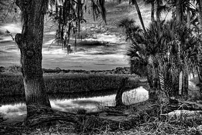 Photograph - Across The Myakka Marsh by HH Photography of Florida