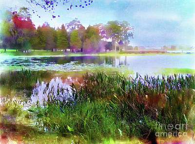 Photograph - Across The Pond by Judi Bagwell