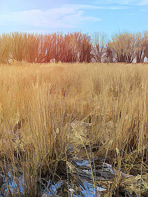Digital Art - Across The Winter Marsh by David King