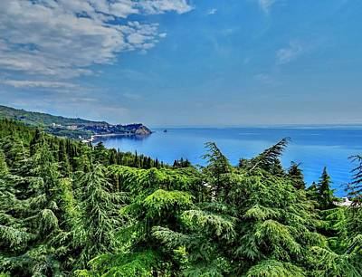 Photograph - Across Treetops And Black Sea by Rick Todaro