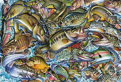 Panfish Painting - Action Fish Collage by Jon Q Wright JQ Licensing