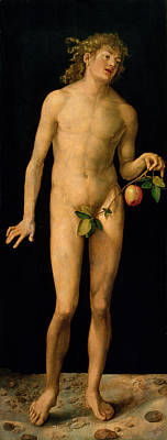 Garden Of Eden Painting - Adam by Albrecht Duerer