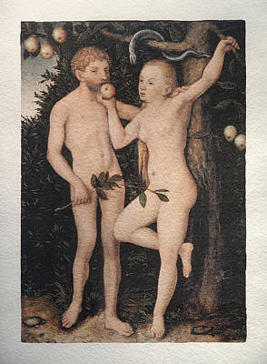 Painting - Adam And Eve by Cranach Lucas the Elder