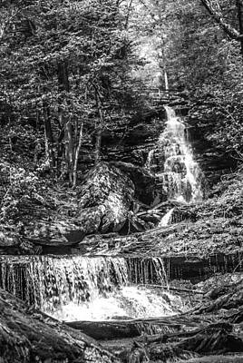 Photograph - Adams Falls - 8867 by G L Sarti