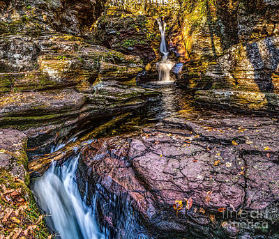 Photograph - Adams Falls At Ricketts Glen by Nick Zelinsky