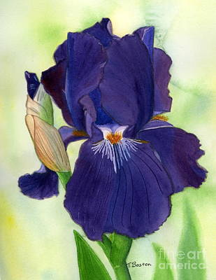Painting - Adeles Iris by Teresa Boston