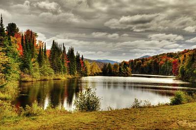 Adirondack Nature Print by Tony Beaver