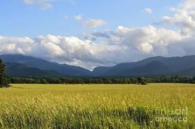 Photograph - Adirondack Vista by Stephanie Varner