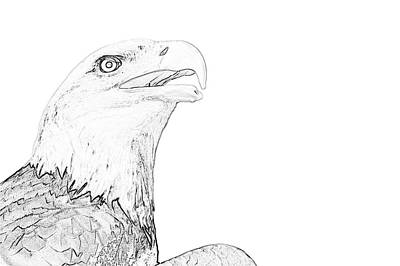 Digital Art - Adler Bald Eagle by PixBreak Art