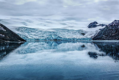 Photograph - Admiralty Bay Glacier by Maria Coulson