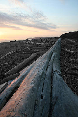 Photograph - Admiralty Log by Dylan Punke