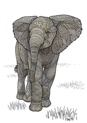 Drawing - Adolescelephant by ZH Field